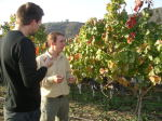 Vine to Wine Course